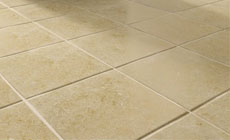 Tile & Grout Cleaning Pinellas County FL