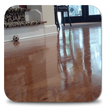 Wood Floor Refinishing Cleaning
