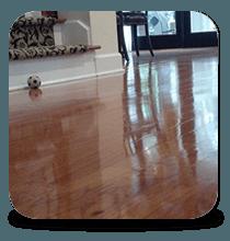 Wood Floor Refinishing Cleaning